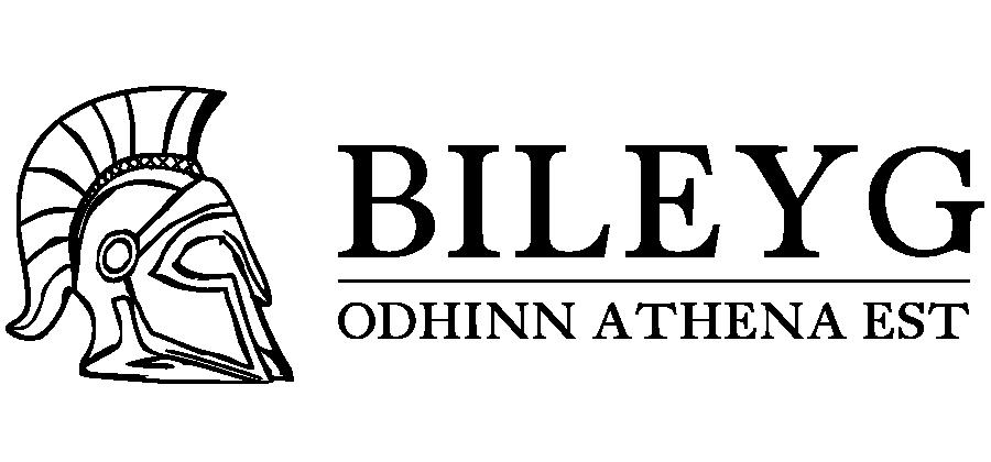 New bileyg.com logo